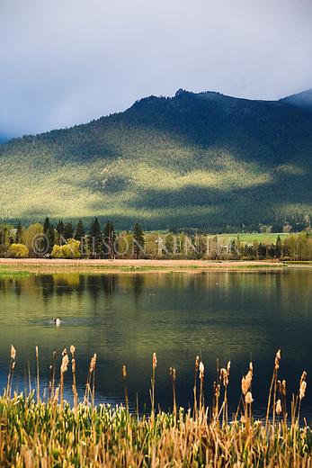 The Lee Metcalf National Wildlife Refuge in the Bitterroot Valley in Montana