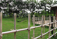 Stock image of simple wooden railing leading to a garden.