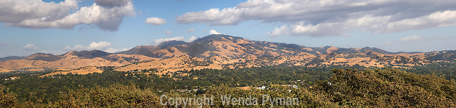 Sweeping view of Mount Diablo, the Valley and surrounding foothills.
