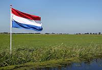 Nederlandse vlag in een weiland