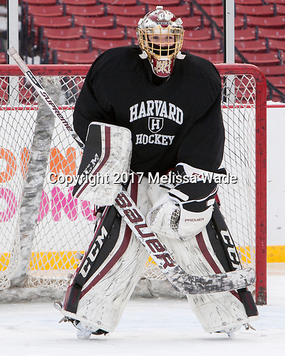 Brianna Laing (Harvard - 1) - The Harvard University Crimson practiced at Fenway on Monday, January 9, 2017, in Boston, Massachusetts.