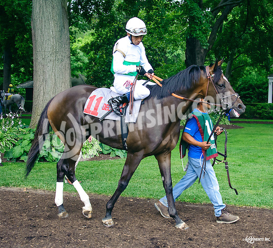 Street Fashion before The Cape Henlopen Stakes at Delaware Park on 7/9/16