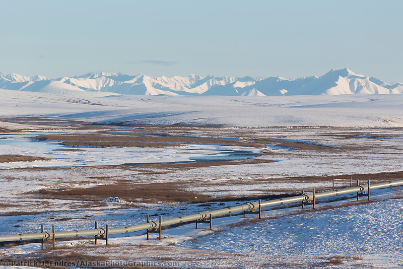 The pipeline travels across the Arctic tundra with the Philip Smith mountains of the Brooks Range in the distance, Arctic, Alaska.