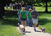 NWA Democrat-Gazette/ANDY SHUPE<br /> Saturday, May 6, 2017, during the 25th annual Dogwood Walk benefitting the Humane Society of the Ozarks in Gulley Park in Fayetteville. The event featured dog trick and superlative competitions, vendors and a parade around the park.