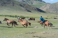 Mongolia, Ovorkhangai Province, Kharakhorum, Orkhon Bag. Nomad men herding horses.
