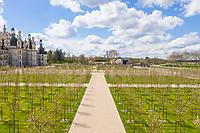 France, Loire-et-Cher (41), Chambord, château de Chambord, les jardins à la française, plantation de merisiers à fleurs doubles