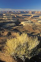 View of Green River from Green River Overlook, Island in the Sky District, Canyonlands National Park, Utah.