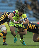 161127 Wasps v Sale Sharks
