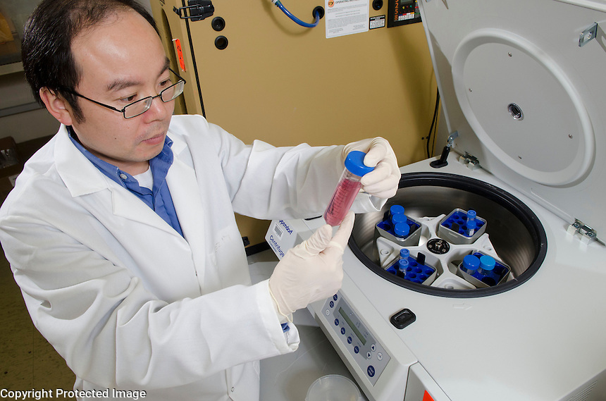 Dr. Henry Wan isolates the virus though centrifugation of the cell culture.