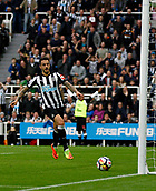 1st October 2017, St James Park, Newcastle upon Tyne, England; EPL Premier League football, Newcastle United versus Liverpool; Joselu of Newcastle United taps in the equaliser in the 36th minute in the 1-1 draw
