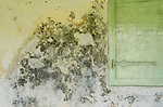 Wall details on an old nutmeg warehouse, Banda Neira.