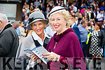 Enjoying  Ladies Day at the Listowel Harvest Racing Festival on Friday were l-r Louise Griffin, Listowel and Allwyn Keane, Listowel