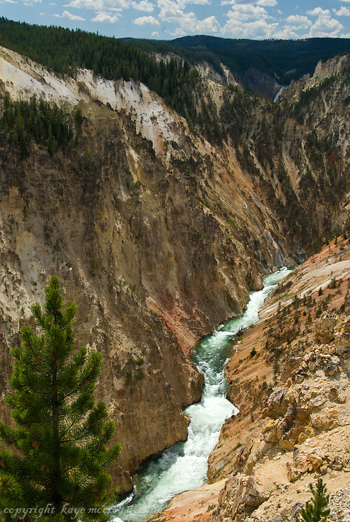 Yellowstone Grand Canyon and Artist Point