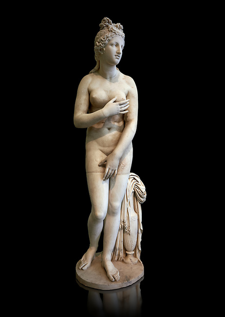 2nd century AD Roman marble sculpture of Aphrodite (Venus), 'Dresden Capitoline' Type, copied from a Hellanistic Greek original,  inv 6296, Museum of Archaeology, Italy, black background