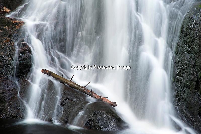 Log at Cascading Purgatory Falls