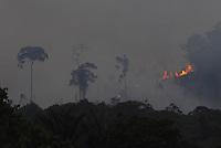 Queimada em ramal da rodovia Transuruará que liga os municípios de Santarém na BR 163(Santarém Cuiabá) a Uruará(Transamazônica), a cerca de 70m Km de Santarém.17/11/2007Santarém, Pará, Brasil.Foto Paulo Santos