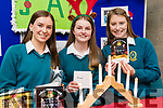 Jenny Fox, Amy O'Mahony and Katie Nagle, students attending Mercy Mounthawk Secondary School, Tralee pictured with their project JAK Christmas Cards, at IT Tralee Student Enterprise awards on Friday last.