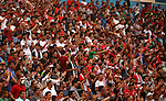 Palestinian fans cheer during the 2018 FIFA World Cup qualifying football match between Palestine and UAE, at the Faisal al-Husseini Stadium, on September 8, 2015 in the West Bank town of Al-Ram. Photo by Shadi Hatem