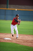 Loy Hickmon (5) of St John'S College High School in Silver Spring, Maryland during the Under Armour All-American Pre-Season Tournament presented by Baseball Factory on January 14, 2017 at Sloan Park in Mesa, Arizona.  (Mike Janes/Mike Janes Photography)