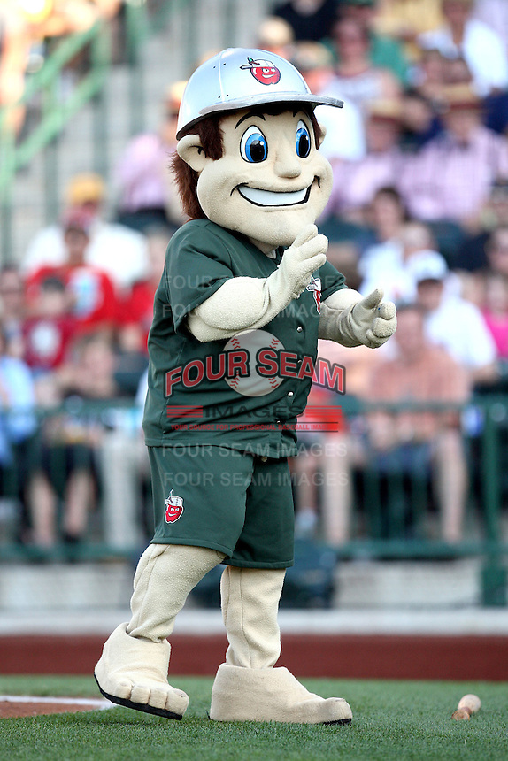 Fort Wayne TinCaps Mascot during the Midwest League All Star Game at Parkview Field in Fort Wayne, IN. June 22, 2010. Photo By Chris Proctor/Four Seam Images