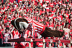 Wisconsin Badgers mascot Bucky Badger does pushups after a touchdown during an NCAA college football game against the Austin Peay Governors on September 25, 2010 at Camp Randall Stadium in Madison, Wisconsin. The Badgers beat the Governors 70-3. (Photo by David Stluka)