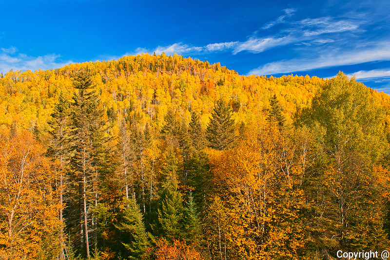 Autumn colors in the Chic-Choc Mountains, a mountain range that is  part of the Notre Dame Mountains, which is a continuation of the Appalachian Mountains. This is a provincial parc, not a true federal park.<br />