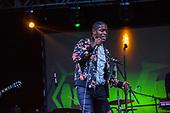 VINATAGE TROUBLE, LIVE, 2018, DANIEL GRAY