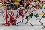29 December 2018: University of Vermont Catamount Forward Joey Cipollone, a Freshman from Purchase, NY, attempts to get the puck by Rensselaer Engineer Goaltender Owen Savory, a Freshman from Cambridge, ON, in second period action at Gutterson Fieldhouse in Burlington, Vermont. The Catamounts rallied from a 2-0 deficit to defeat RPI 4-2 and win the annual Catamount Cup Tournament. Mandatory Credit: Ed Wolfstein Photo *** RAW (NEF) Image File Available ***