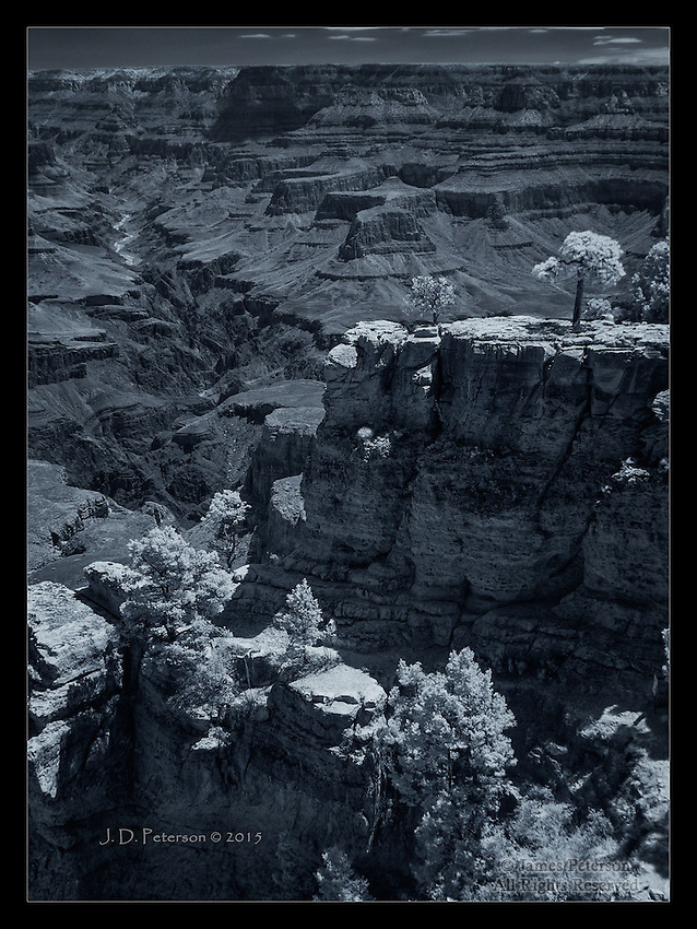 South Rim Summer View (Infrared)