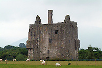 Ballymalis Castle in Killarney <br /> Photo: Don MacMonagle <br /> e: info@macmonagle.com