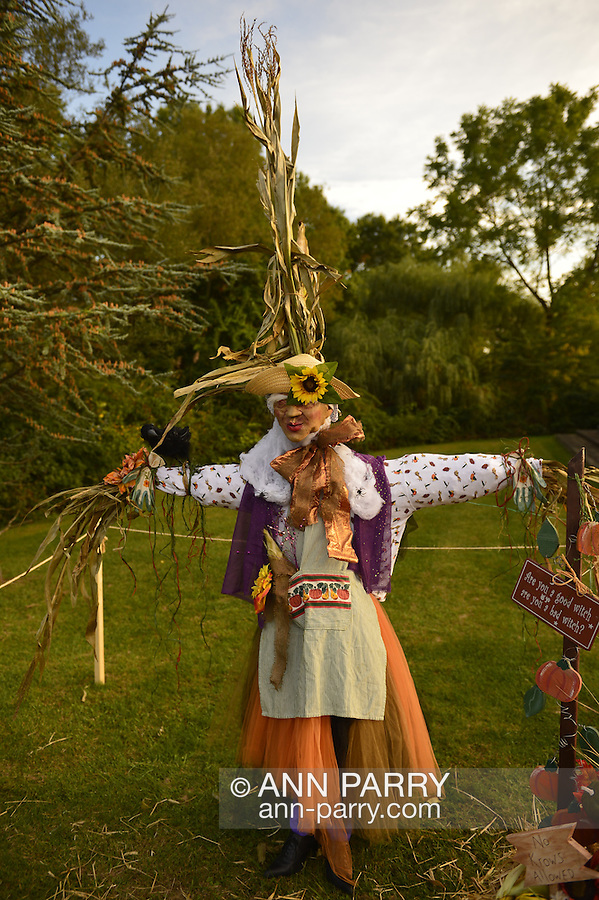 Old Bethpage, New York, USA. September 28, 2014. In the scarecrow contest, a colorful entry is a witch dressed in an orange and purple outfit with tall cornhusks coming from its sleeves and top, at the 172nd Long Island Fair, a six-day fall county fair held late September and early October. A yearly event since 1842, the old-time festival is now held at a reconstructed fairground at Old Bethpage Village Restoration. The sign next to the scarecrow asks 'Are you a good witch - are you a bad witch?'