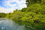 Boca Grade, a small river mouth with forests and mangroves off the south-eastern section of Coiba Island, Panama