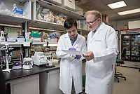 Robert Machuca '20 and his mentor, Dr. Markus Kalkum, Professor, Department of Molecular Imaging & Therapy and Director, Mass Spectrometry & Proteomics Core at City of Hope National Medical Center.<br /> Occidental College students work at City of Hope National Medical Center in Duarte as part of InternLA, July 24, 2018.<br /> Career Services' InternLA is a paid summer internship program which helps Oxy students gain real-world work experience from actual businesses in Los Angeles and surrounding area.<br /> (Photo by Marc Campos, Occidental College Photographer)