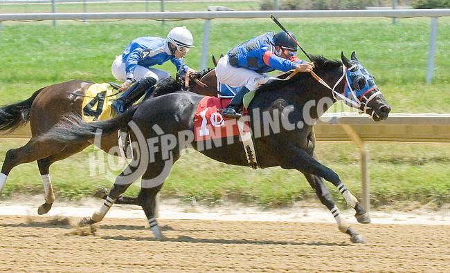Runnin From Love winning at Delaware Park on 7/4/12