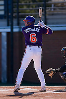 Stan Widman (6) of the Clemson Tigers at bat versus the Wake Forest Demon Deacons during the first game of a double header at Gene Hooks Stadium in Winston-Salem, NC, Sunday, March 9, 2008.