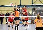 2016-01-09 / Volleybal / Seizoen 2015-2016 / Dames Geel &ndash; Herenthout / Willems (Geel) met de smash tegen Peeters<br /><br />Foto: Mpics.be