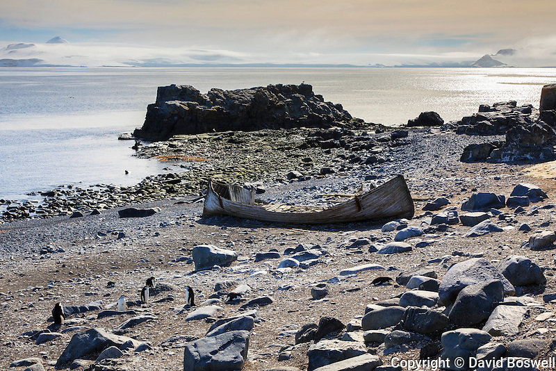 A ruined boat, a relic of the Antarctic whaling era, deteriorates on a beach at Half Moon Island in the South Shetland Islands near the Antarctic peninsula.