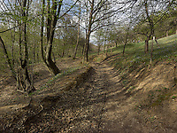 FOREST_LOCATION_90188