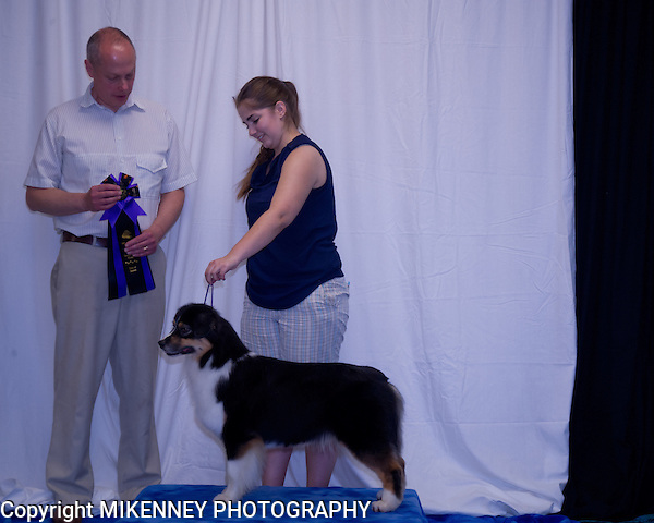 PEN-NY Cent-Sation June 1 & 2 2013 Conformation, Rally, Obedience & Agility