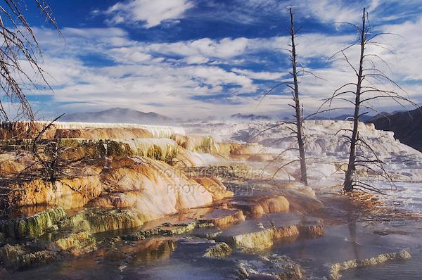 Mammoth Hot Springs Terrace, Mammoth Hot Springs, Yellowstone NP,Wyoming, USA
