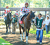 Tiz My Valentine before The Kent Stakes (gr 3) at Delaware Park on 7/18/15