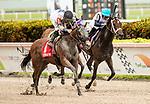 June 29, 2019: #1 Itsmyluckycharm wins the Azalea Stakes under Albin Jimenez for Trainer/Owner/Breeder Ed Plesa, Jr. at Gulfstream Park on June 29, 2019 in Hallandale Beach, FL. (Photo by Carson Dennis/Eclipse Sportswire/CSM)