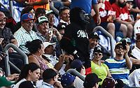 Chango la mascota    <br /> .<br /> Acciones, durante el partido de beisbol entre<br /> Criollos de Caguas de Puerto Rico contra las &Aacute;guilas Cibae&ntilde;as de Republica Dominicana, durante la Serie del Caribe realizada en estadio Panamericano en Guadalajara, M&eacute;xico,  s&aacute;bado 4 feb 2018. <br /> (Foto  / Luis Gutierrez)