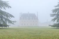 France, Loir-et-Cher (41), Cellettes, Château de Beauregard et parc, aile sud-est et cèdres bicentenaires