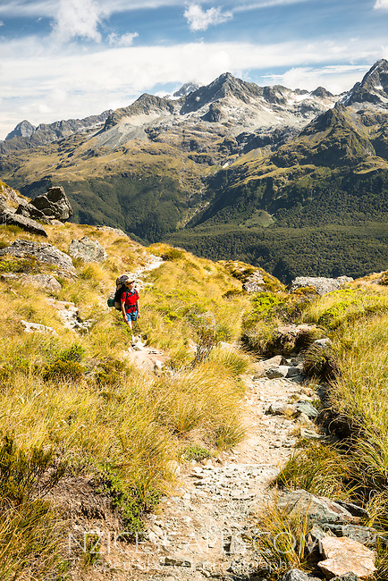 Young woman tramper on Routeburn Track with Darran Mountains in background, Fiordland National Park, UNESCO World Heritage Area, Southland, South Island, New Zealand, NZ
