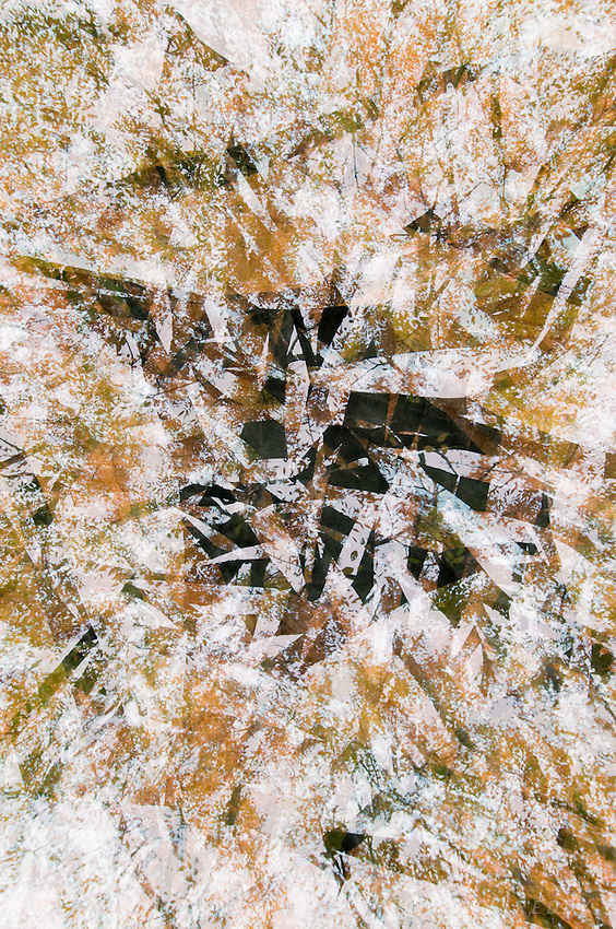 abstract multiple exposure