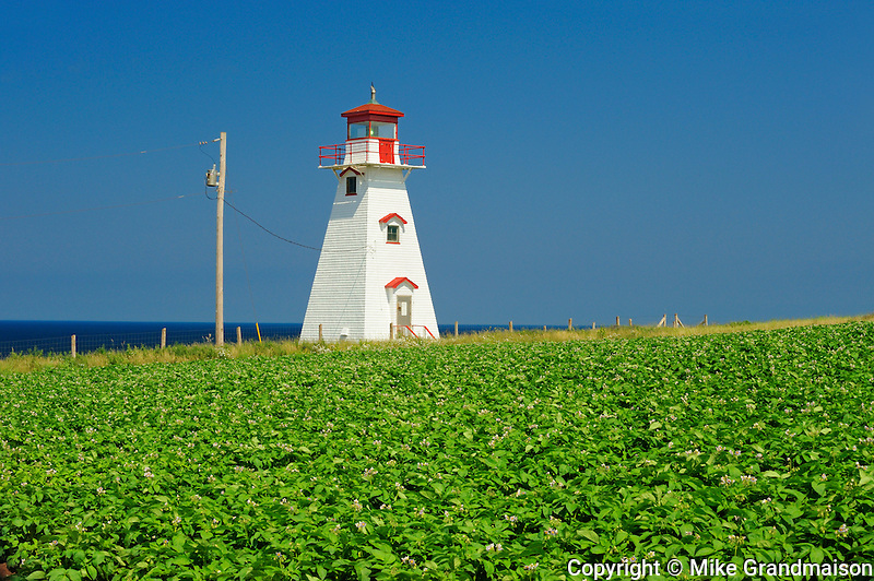 Lighthouse and potato field<br /> Cape Tryon<br /> Prince Edward Island <br /> Canada