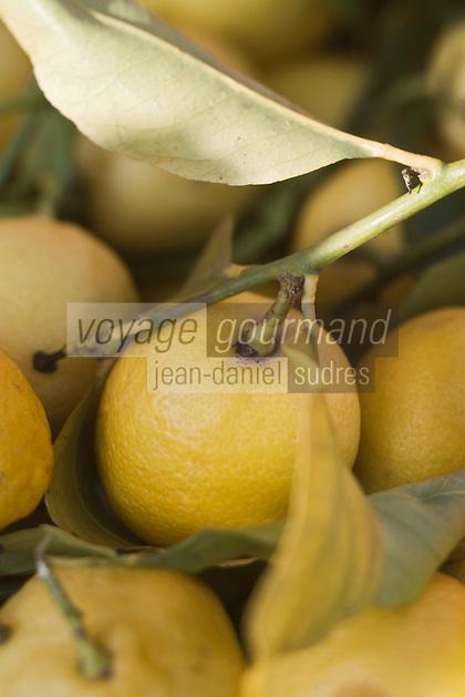 Europe/France/Provence-Alpes-Côte d'Azur/06/Alpes-Maritimes/Nice:Citrons de Menton sur le marché  du Cours Saleya