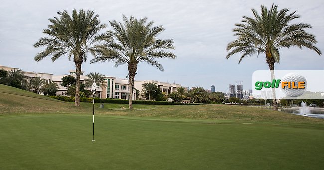 6th green at The Address Montgomerie Golf Club, Dubai, United Arab Emirates.  27/01/2016. Picture: Golffile | David Lloyd<br /> <br /> All photos usage must carry mandatory copyright credit (&copy; Golffile | David Lloyd)