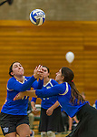 1 November 2015: Yeshiva University Maccabee Setter, Defensive Specialist, and team co-Captain Aliza Muller, a Senior from Los Angeles, CA, in action against the Saint Joseph College Bears at SUNY Old Westbury in Old Westbury, NY. The Bears shut out the Maccabees 3-0 in NCAA women's volleyball, Skyline Conference play. Mandatory Credit: Ed Wolfstein Photo *** RAW (NEF) Image File Available ***